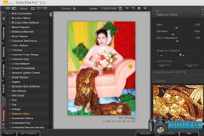 Download Gratis -Nik Software Color Efex Pro 3.108 | Aziscs1.com