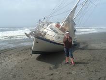 A Shipwreck, right behind our Condo.
