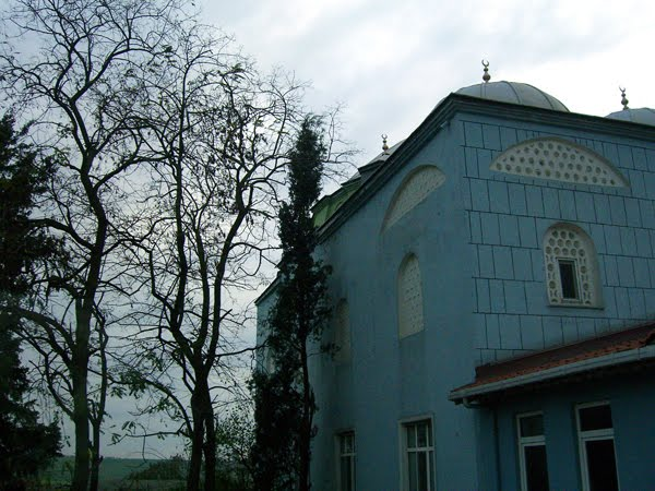 A small village's mosque outside Istanbul.