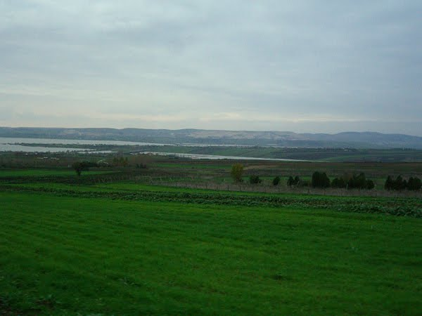 A farm field outside Istanbul in December.