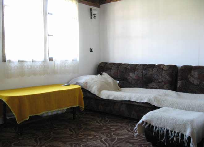 стая №1: