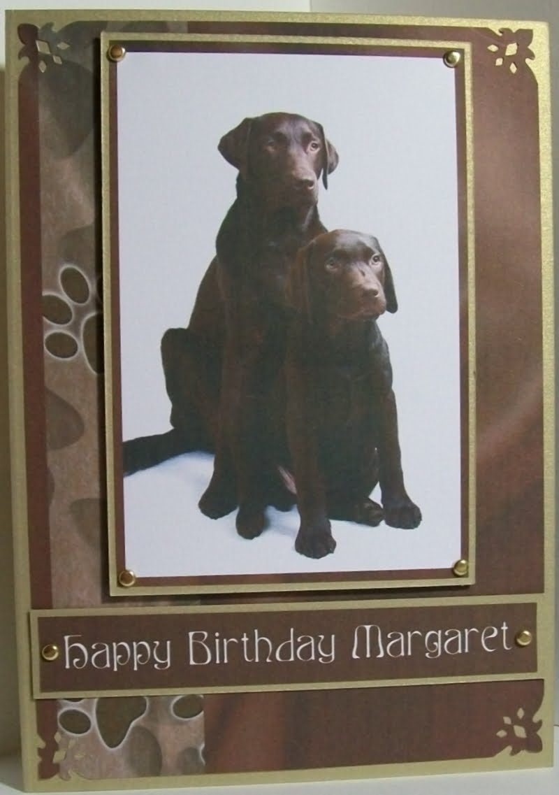 Chocolate labrador birthday card. Was asked to make a card for a lady who ...