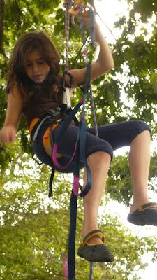 Tree Climbing  - Sheva Apelbaum