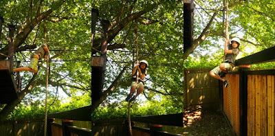 Rope Climbing  - Sheva Apelbaum