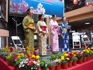 Feria Sakura 2009 (resumen) P1020038
