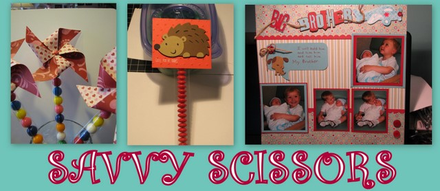 Savvy Scissors