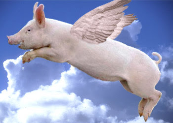 Flying pigs moment: Abu Mazen, Aboul Gheit slam Hamas