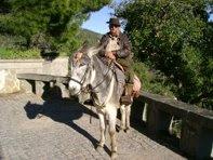 O burro e o turismo. clique em cima da imagem!