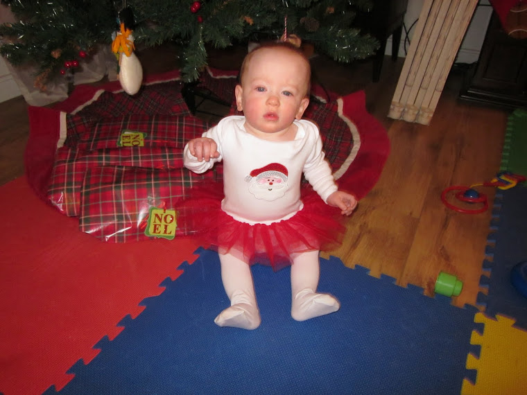 What Are You Lookin' At?! ...So what if I'm wearing a Christmas tutu.