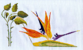 Bird of Paradise Stiletto