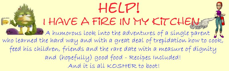 Help! I Have A Fire In My Kitchen