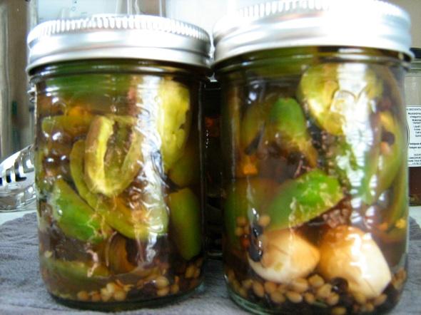 Pickled Jalapeno Peppers | Multiculturiosity