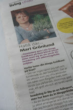 Intervju om min blogg i Metro Living...