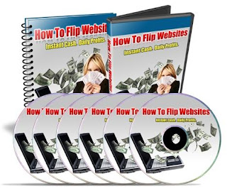 website flipping income generation