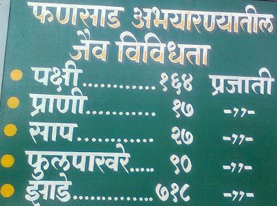 what to see at Phansad Wildlife Sanctuary