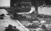 Primul Razboi Mondial-Documentar istoric online-Documentare Istorice Online
