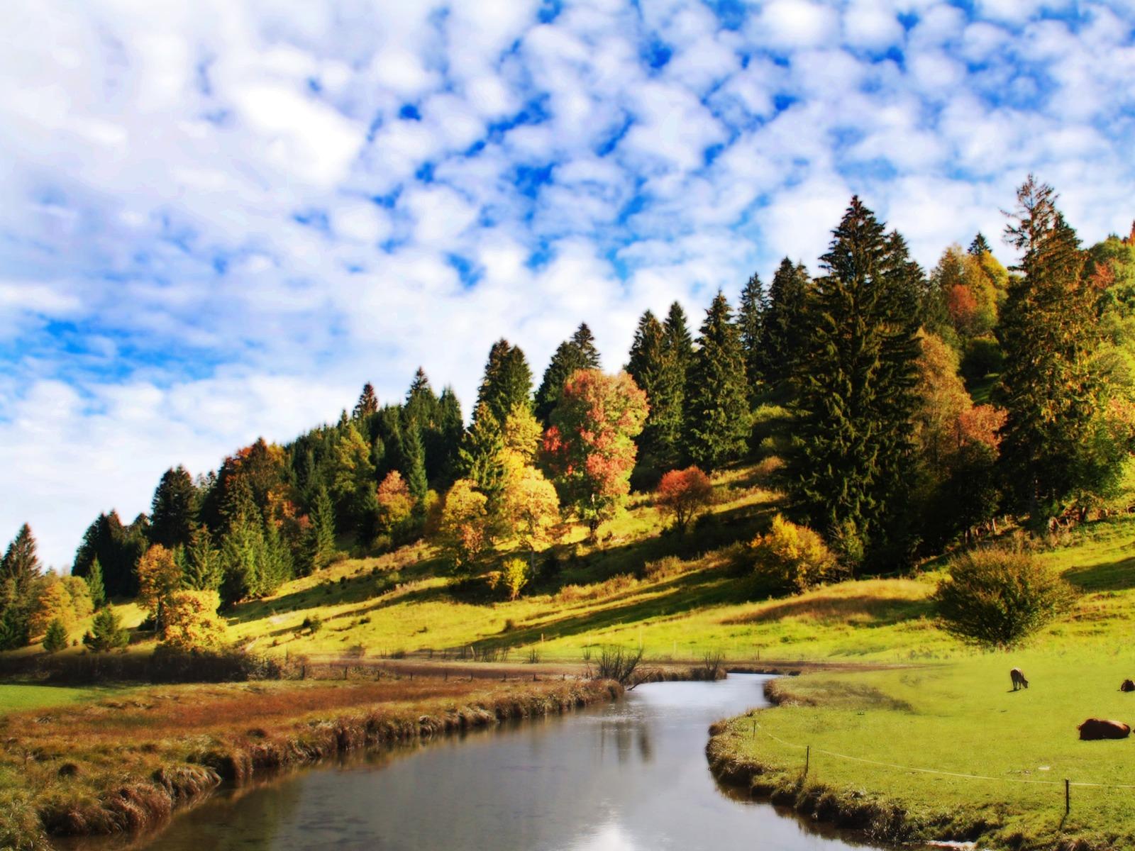 http://3.bp.blogspot.com/_nD_YgZuOadA/TUbOzmtlZkI/AAAAAAAABTM/cD8BAdDICH0/s1600/peaceful-1600-1200-4424.jpg