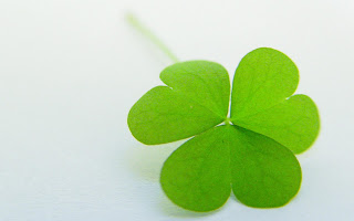 4 Leaves Clover Valentines Day HD Wallpaper
