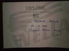 DIPLOME  WELLA   والمركز الأول   ( 2004 )