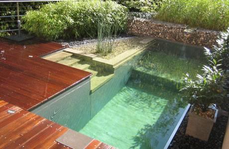 Arquitectura de casas piscina natural en el jard n for Como hacer una alberca ecologica