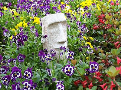 Arreglo diseño de jardin