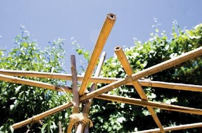 Bambú para construcción auxiliar exterior en una casa