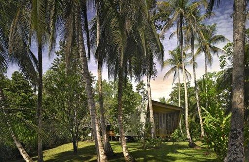 La casa Tropical en su entorno natural con sombras de árboles y palmeras