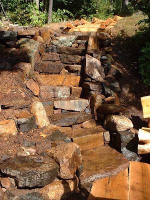 Trozos de troncos