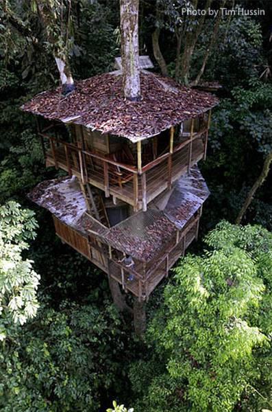 Casa del árbol en Costa Rica