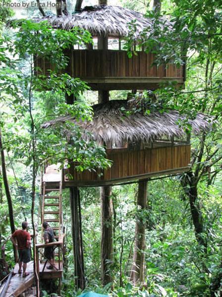 Cabaña rústica y mirador en los árboles
