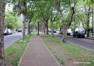 Jardín central en una calle de la ciudad de La Plata, Buenos Aires