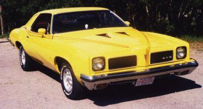 Pontiac Lemans Sport Coupe: 1973 Pontiac GTO