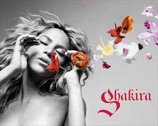 Shakira Beautyful Sexy Wallpaper