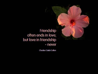 latest friendship day quotes in pictures ~ Free SMS, Free Quotes, Free ...