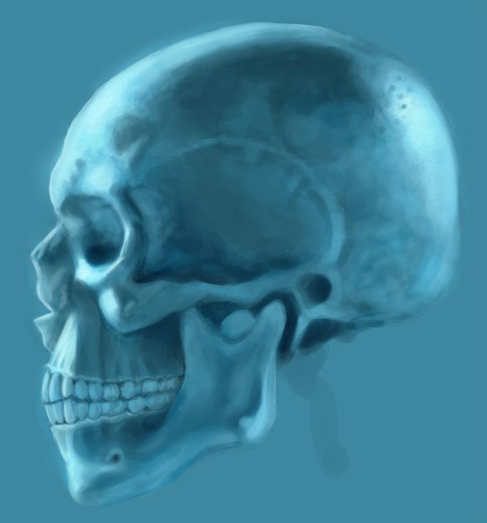 Tony Neto Sketchbook Cranio%2B
