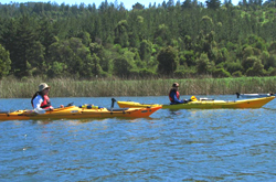 Fiestas Patrias en el Lago Vichuquen