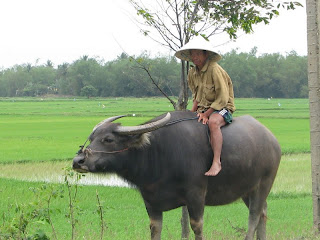 Mekong Bulls Dozer