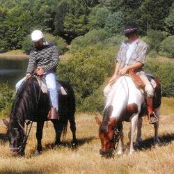 Laisser brouter son cheval