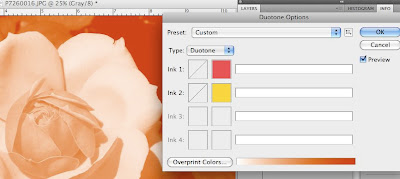 photoshop duotone tutorial screen shot