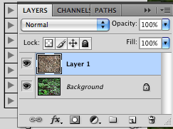 screen shot layers panel