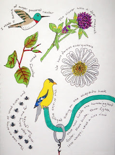artist journal drawing of cabin birds, bugs and flowers