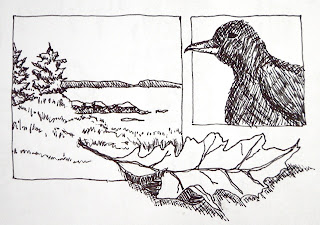 ink drawing of things seen at the cabin