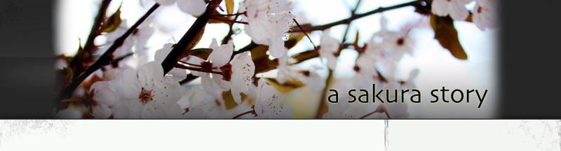 A Sakura Story