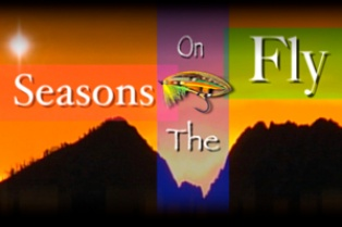 Seasons on the Fly