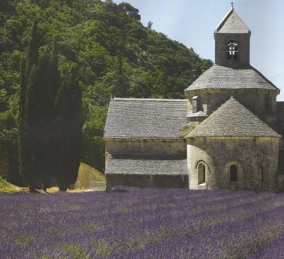 Lavender in Provence, courtesy of Avignon-et-Provence, edited by lb for linenandlavender.net