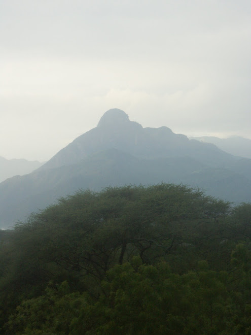 Mt. Koh from MPFSC, Marich, West Pokot