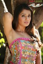 Nikhita Hot Pics