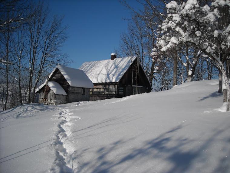 CERUL DE ACASĂ...Decembrie 2010...