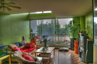 Indoor Plants Decorating Ideas for Interior Green Room