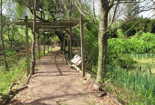 Boxerwood Nature Center Woodland Garden